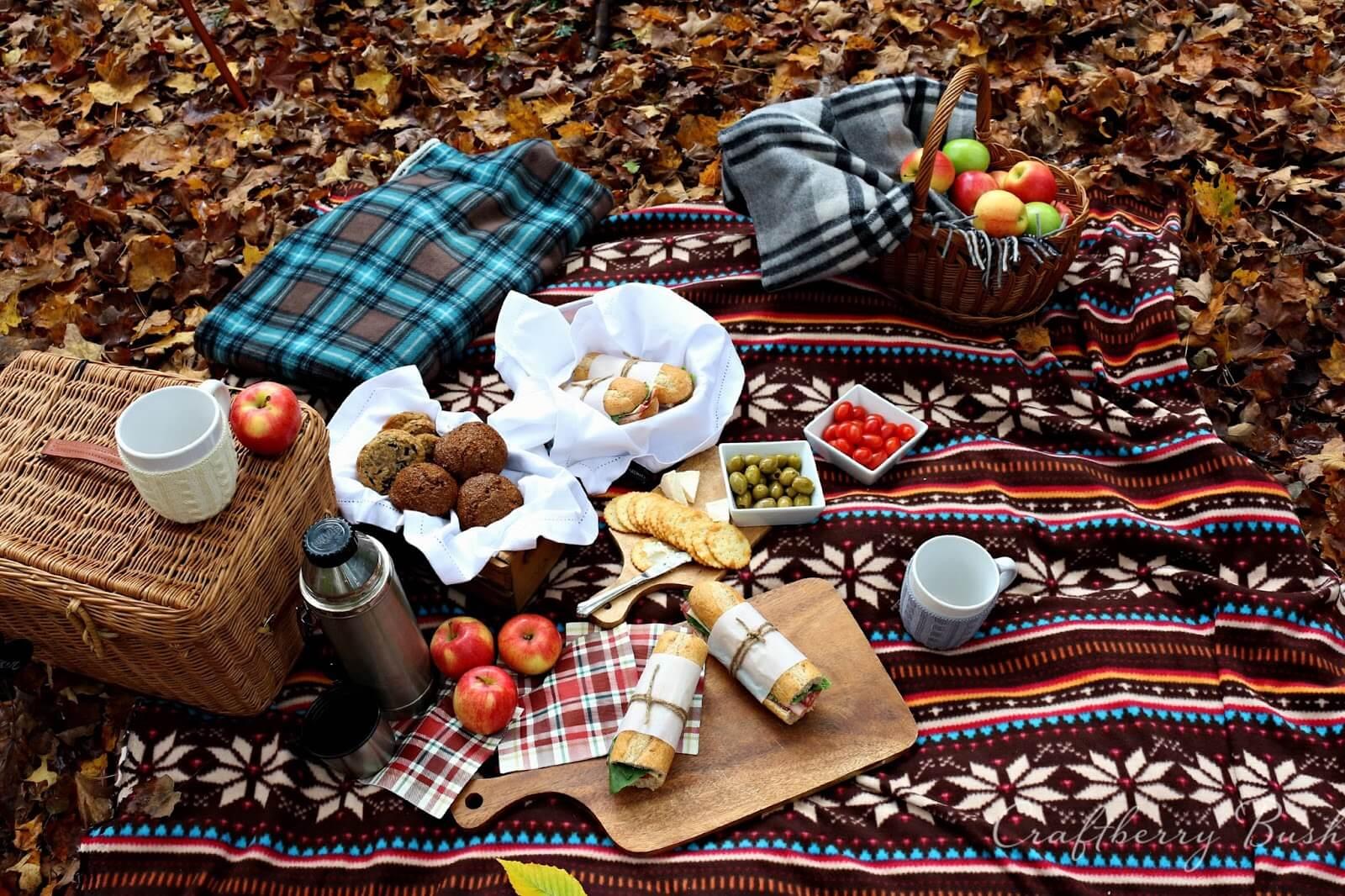 Осенний пикник – идеи и варианты проведения